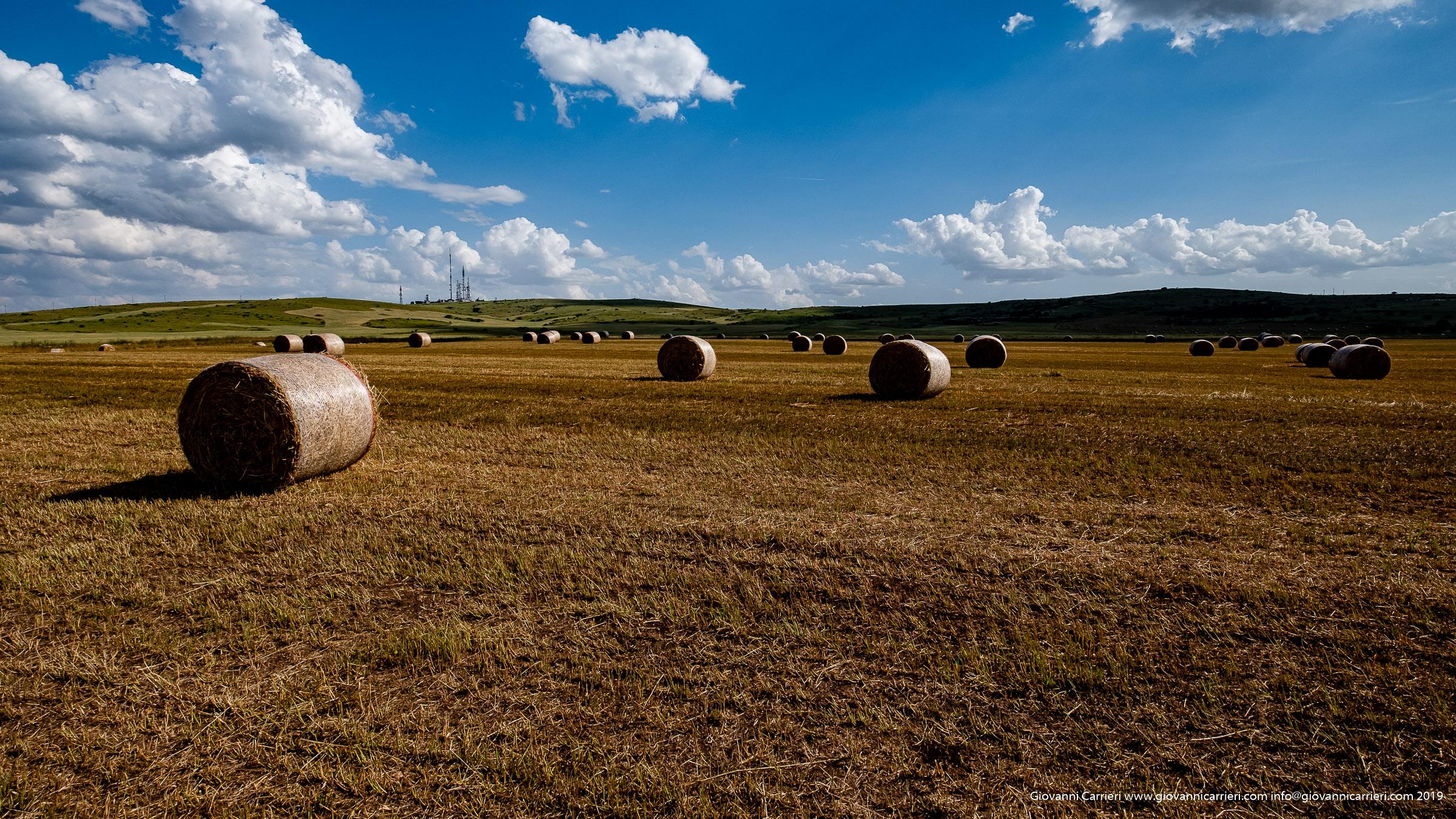 Hay bales near Castel del Monte