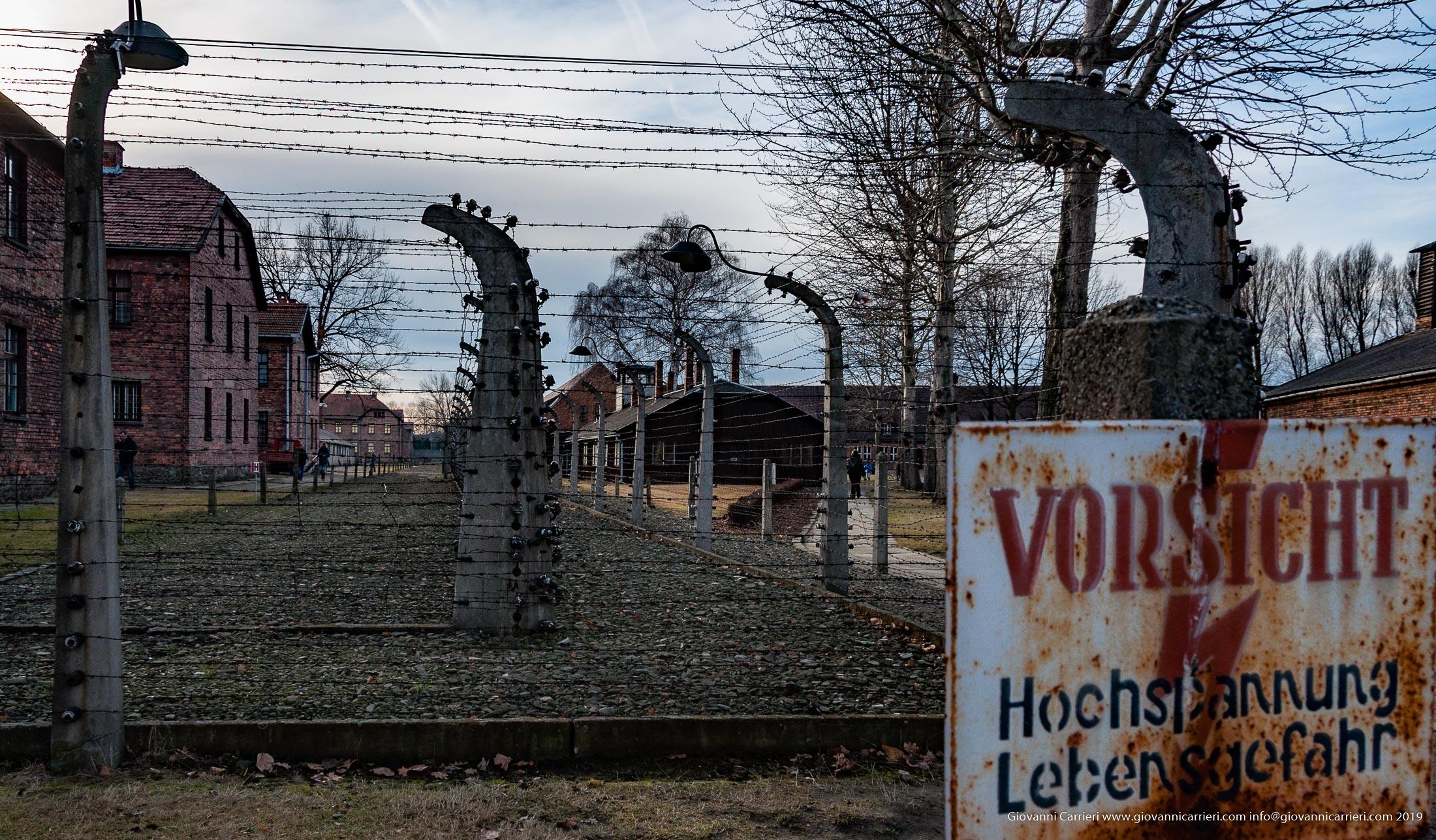 Barbed wire - Auschwitz