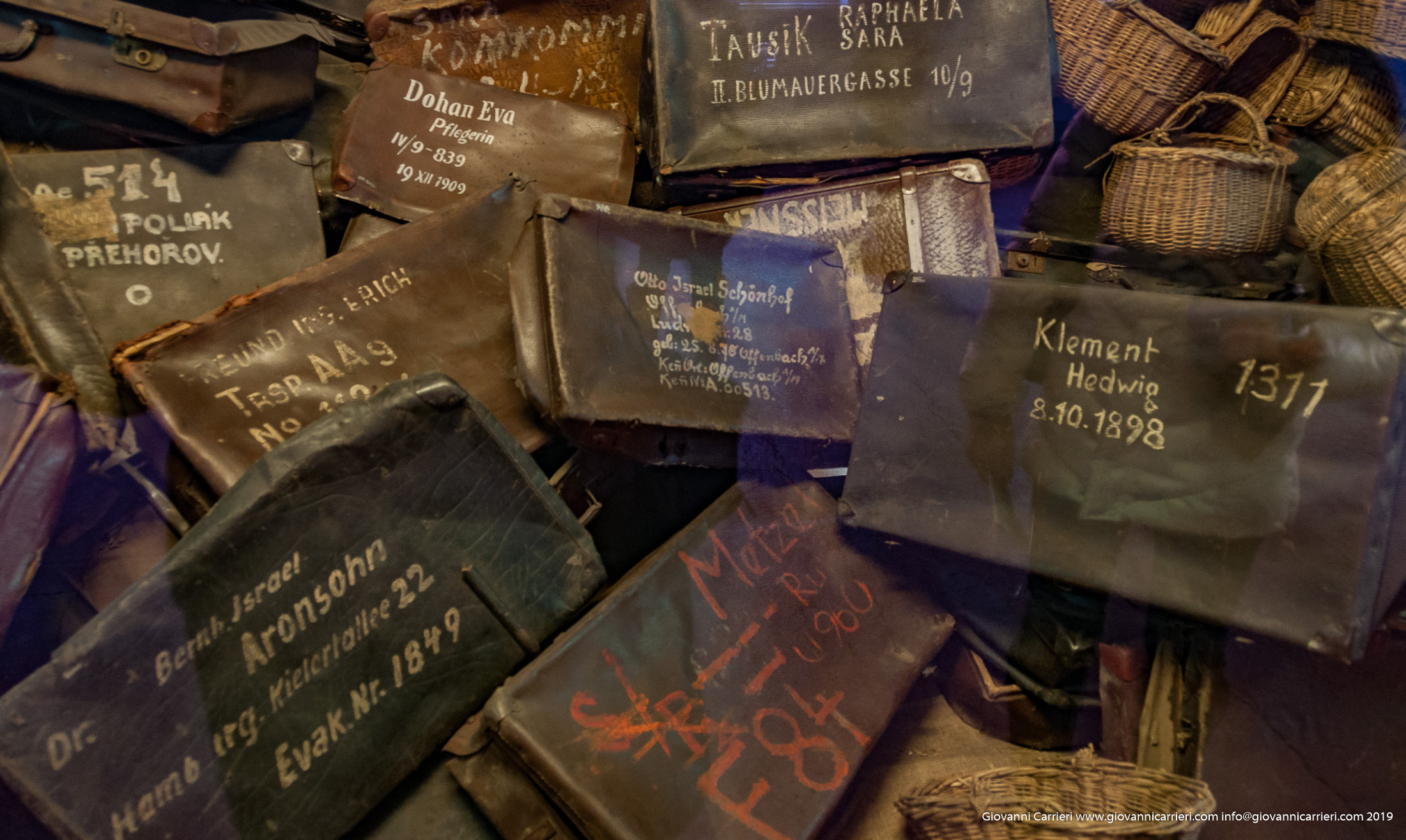 Valige rubate - Auschwitz