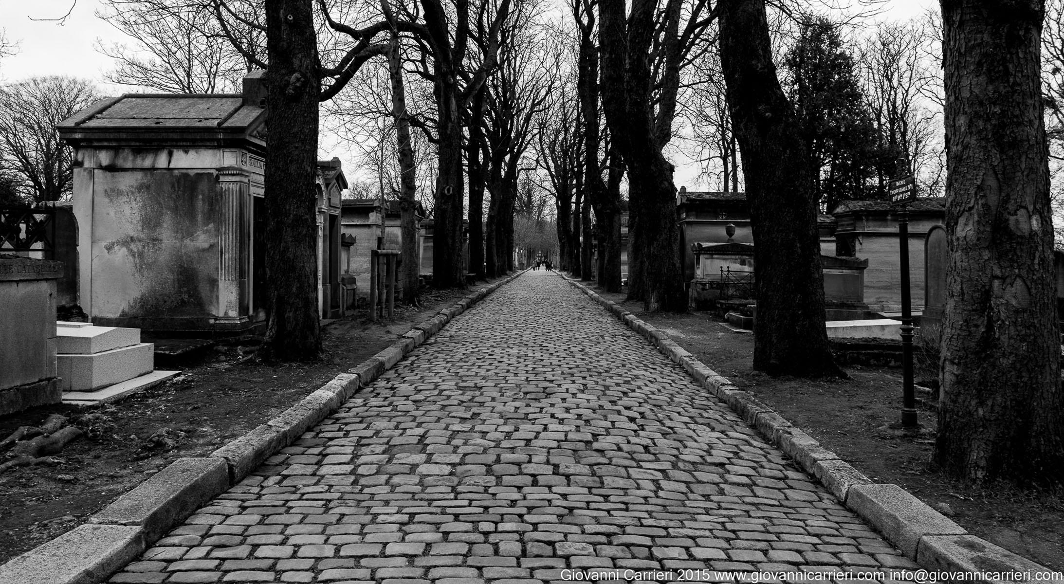 Le strade e gli alberi del Père-Lachaise