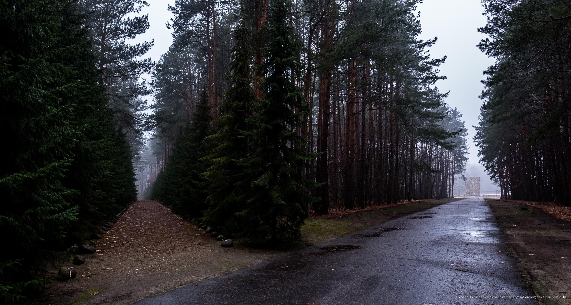 Il percorso nel bosco in memoria delle vittime del campo di sterminio di Sobibór