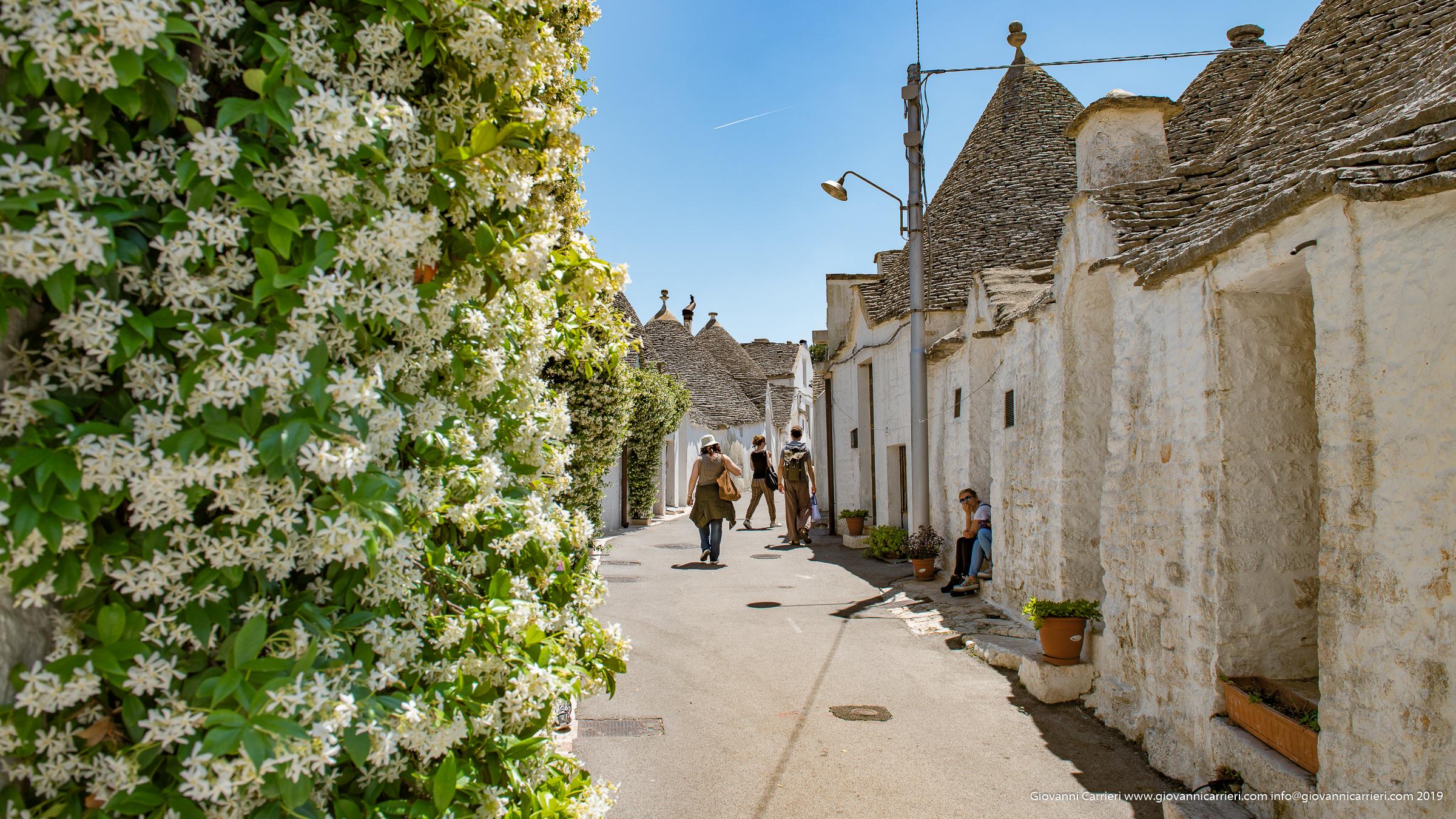 Le stradine del centro storico di Alberobello