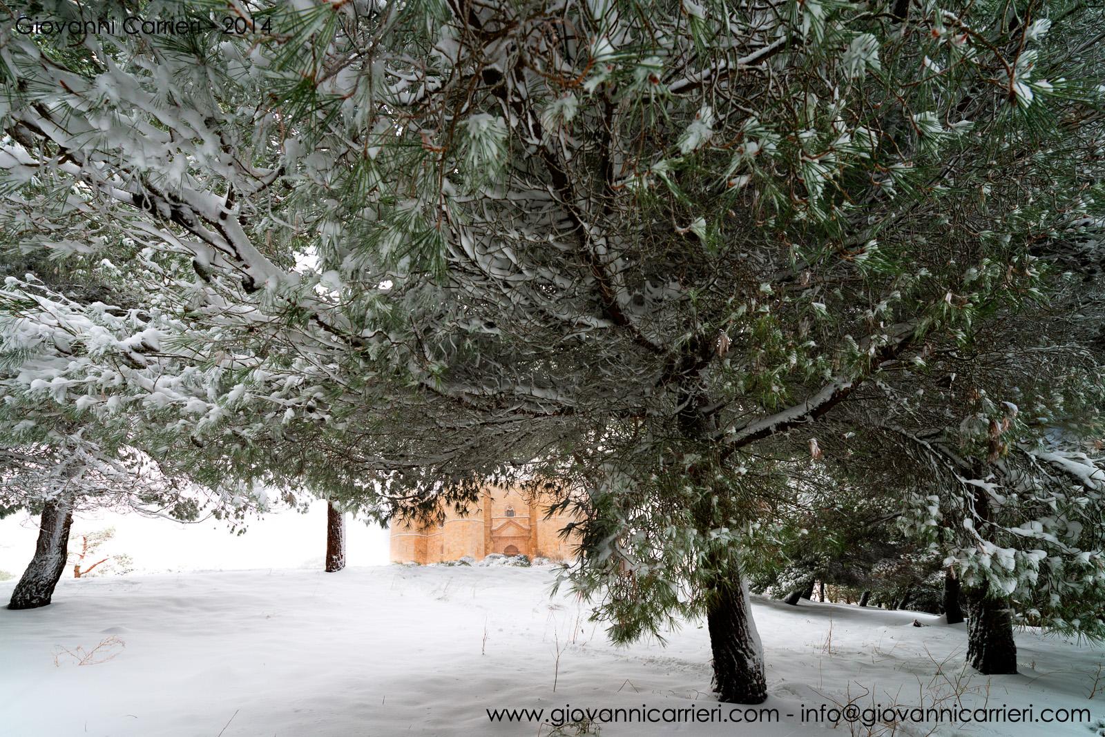 Il castello di Federico II tra alberi e neve - Castel del Monte
