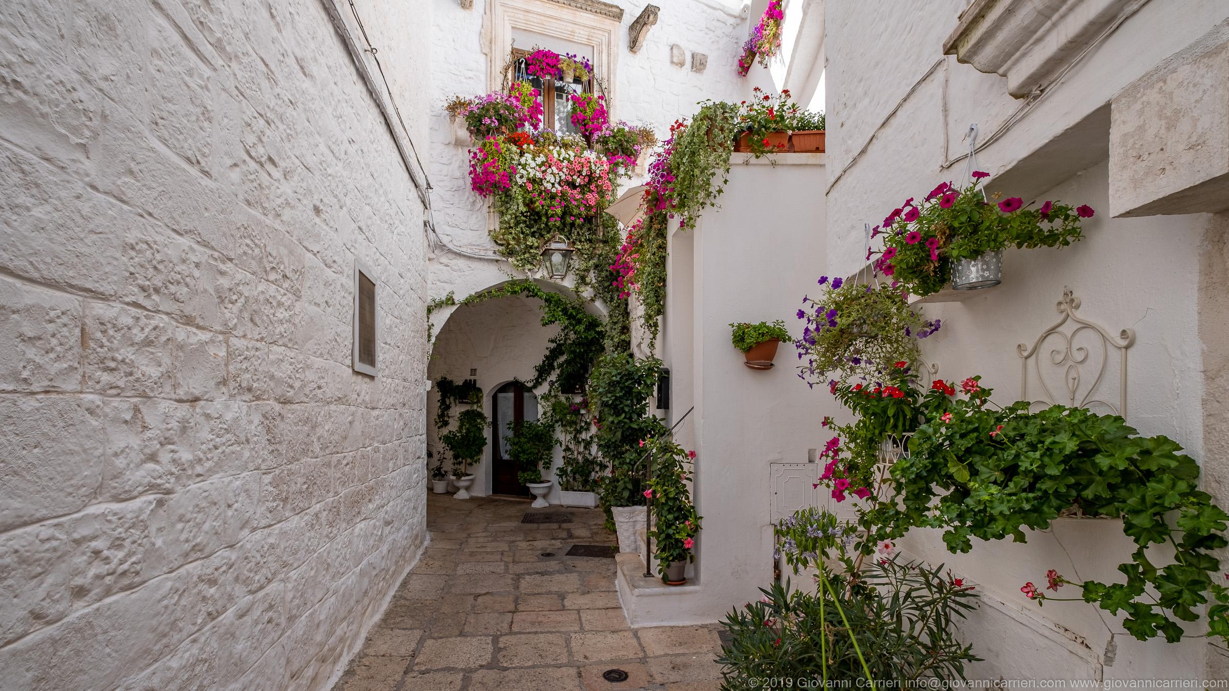 Cisternino ed i fiori