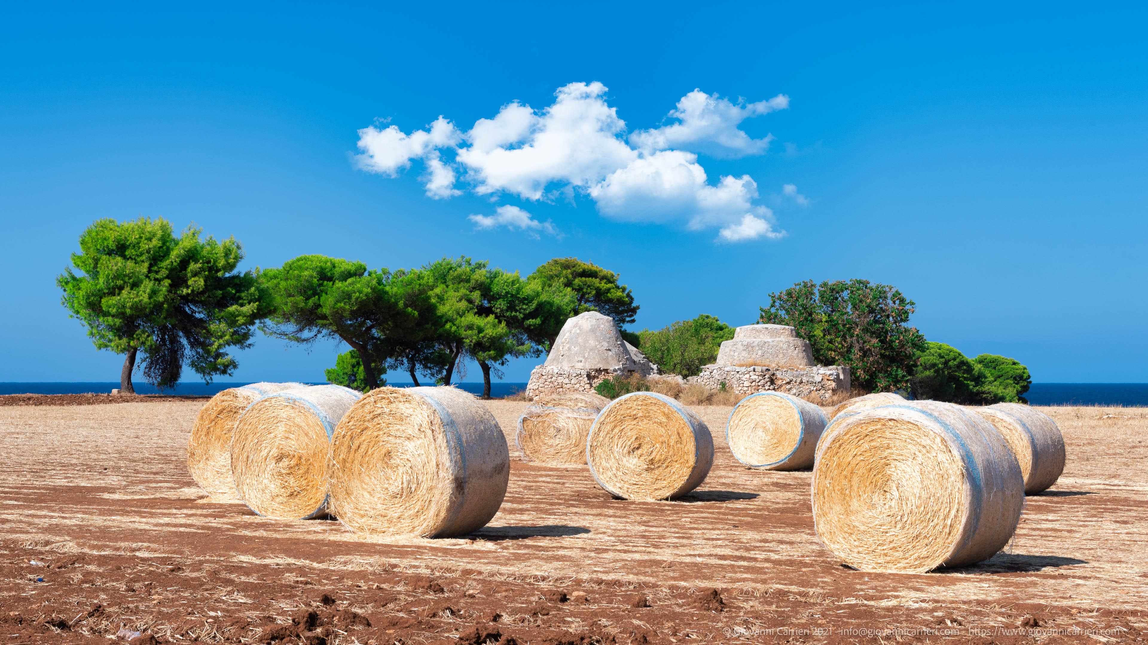 Costa Ripagnola ed i trulli La costa, situata tra le frazioni di Cozze e di San Vito, a nord di Polignano a mare con i suoi caratteristici trulli
