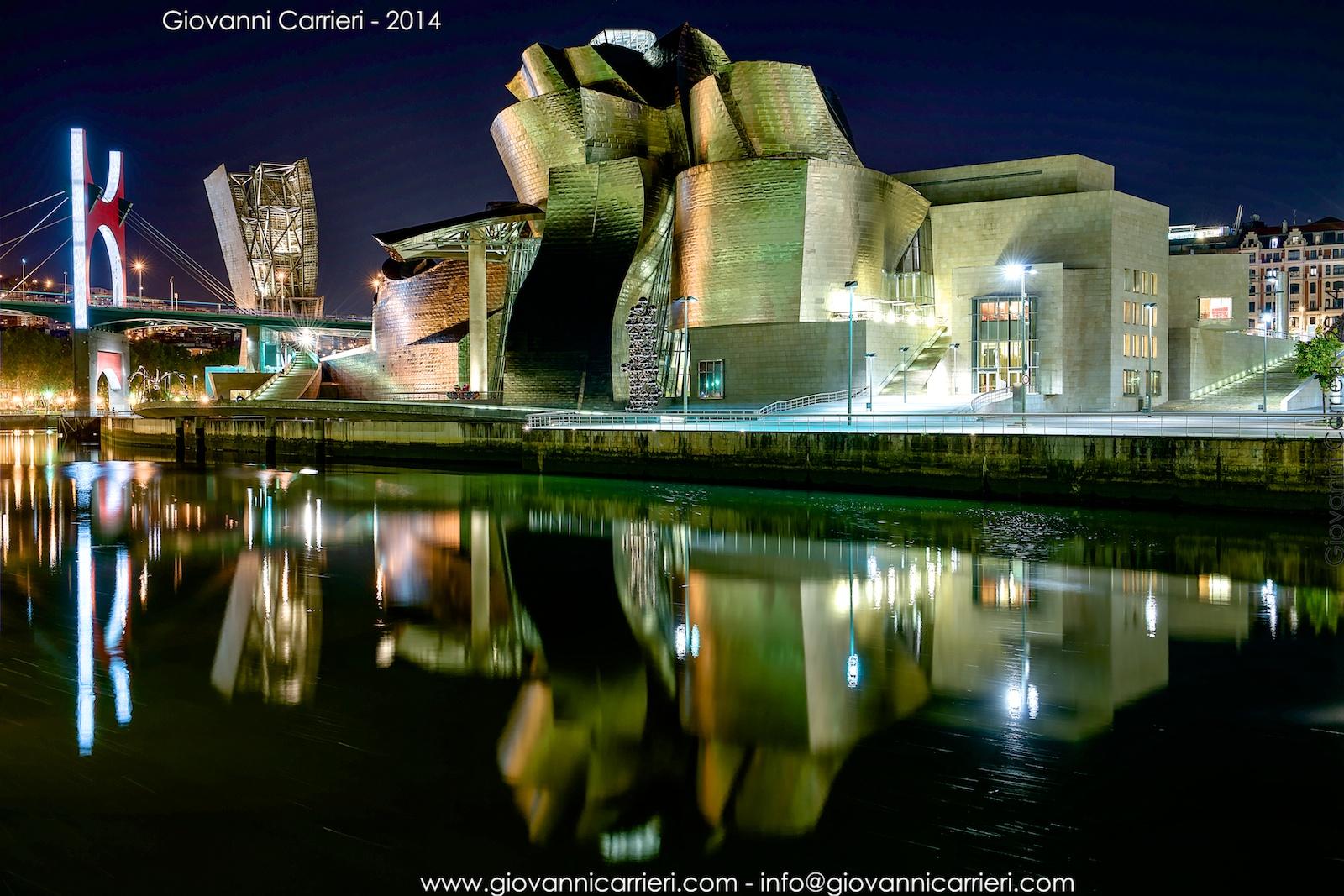 Vista notturna del Guggenheim ed il ponte De la Salve - Bilbao