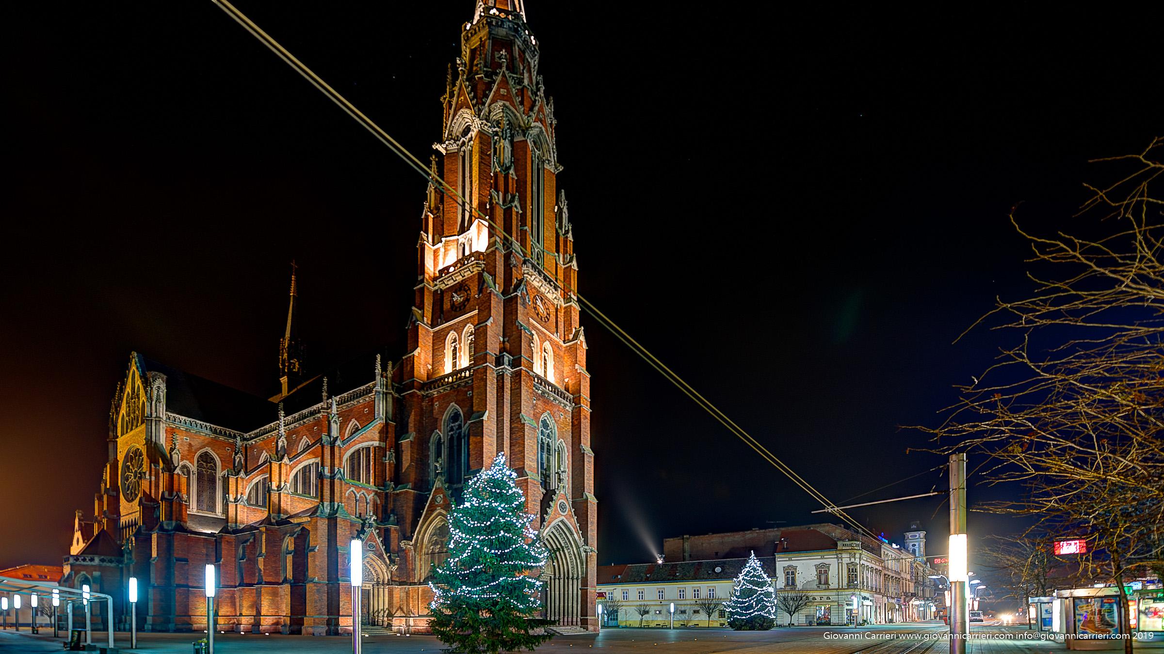 Vista notturna della Concattedrale San Pietro e Paolo di Osijek